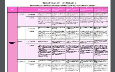 看護師のクリニカルラダー(日本看護協会版)